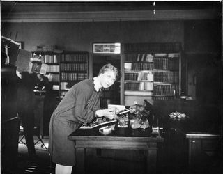 Merle Crisler Foshag examining specimens, c. 1926. Courtesy of the Smithsonian Institution Archives.