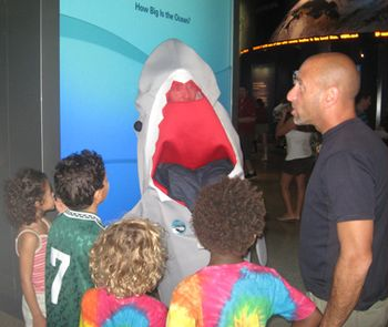 IMG_4477Jason Goldberg shark