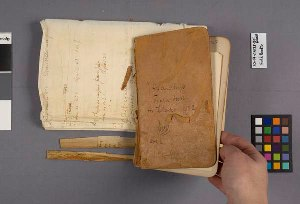 Deteriorated journal (Sandberg, J.H. [Idaho 1892]) and its accompanying list of specimens on onionskin letter paper.