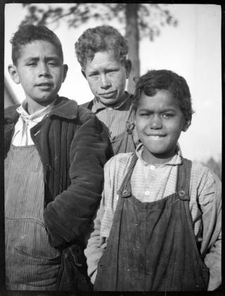 Three Nanticoke schoolboys, 1911–14. The boy in the center is from the Street family. Indian River Hundred, Delaware. Photo by Frank G. Speck. N01278