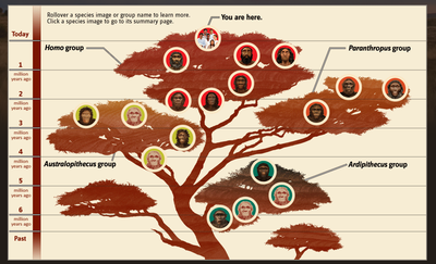 Huma family tree