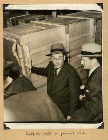 William Mann inspecting the Buffalo crate on ship to Argentina, 1939, Smithsonian Institution Archiv