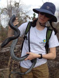 Esther wrangling an indigo snake