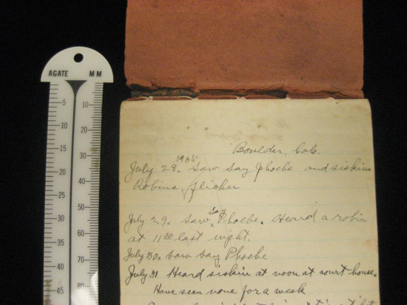 Junius Henderson's notebooks-IMG_1435 (2)