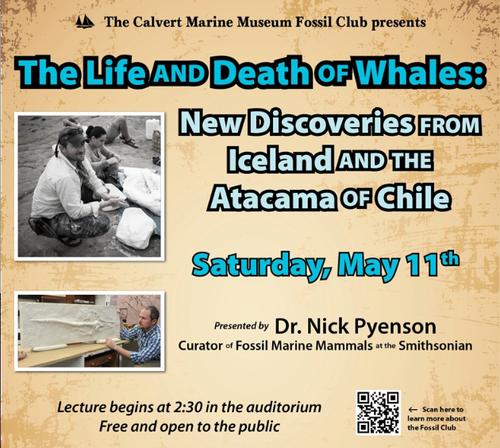 Pyenson CMM lecture 11 May