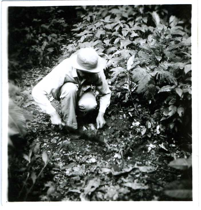 McClure in field019