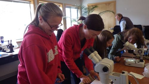 Lab Work as Part of Workshop for BLM and USFS Biologists