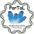 Official-PorToL_Logo-color.jpg