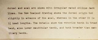 Excerpt of Fowler's description of short-finned eel