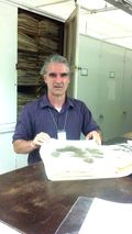 Herbarium visitor Julian Campbell examines historic specimens collected from Kentucky. (Photo by Debbie Bell)