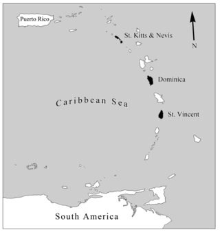 Map showing the locations of St. Kitts & Nevis, Dominica, and St. Vincent within the Lesser Antillean chain of islands. Field work and study sites were set up at all the three islands to study heliconias and their interactions with the native hummingbirds. (Photo by Vinita Gowda)