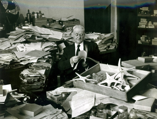 A.H. Clark in his neat office
