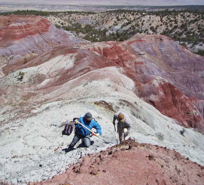 Digging for Triassic plant fossils in New Mexico badlands