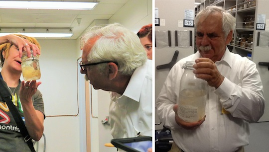 Left: My friend and colleague Cheryl Ames showing some of the box jellies we have collected over the years to Jack. Right: Jack meets Chiropsella rudloei
