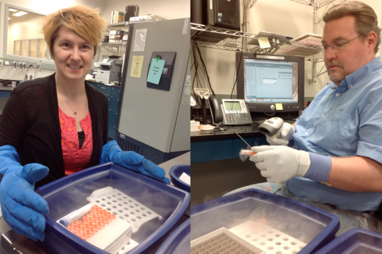 Transfer and accession of samples into the Biorepository (Photos of Chris Huddleston and Cheryl Lewis Ames)