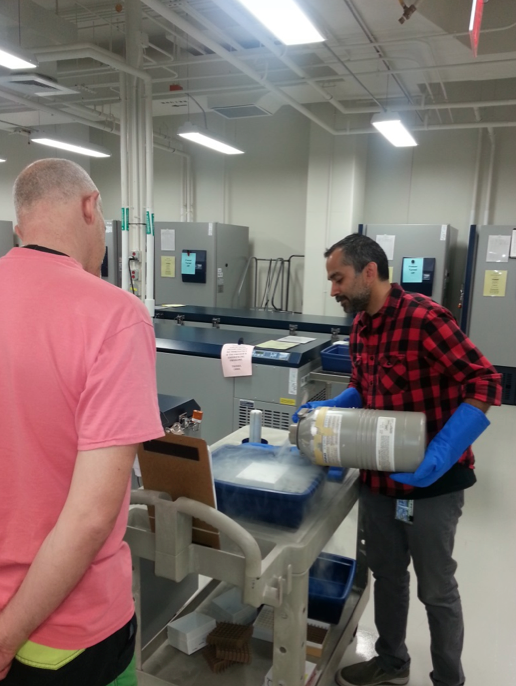 Subsequent packing of frozen samples at the Biorepository (Photos of Azhar Husain, and Allen G. Collins)