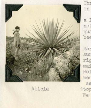 AliciaBig