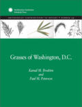 Grasses of Washington, D.C.