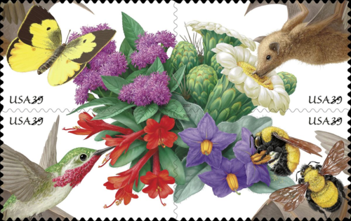 """In the summer, Post Offices will be abuzz with the release of the four-design, 20-stamp Pollination booklet. The four designs featured depict: two Morrison's bumble bees paired with purple, or chaparral, nightshade; a calliope hummingbird sipping from a hummingbird trumpet blossom; a lesser long-nosed bat preparing to """"dive"""" into a saguaro flower; and a Southern dogface butterfly visiting prairie, or common, ironweed. An intricate graphic scheme emphasizes the ecological relationship between pollinators and plants and also hints at the biodiversity necessary to ensure the future viability of that relationship. The four designs are arranged in two alternate blocks that fit together like interlocking puzzles. In one block, the pollinators form a central starburst. In the other, the flowers are arranged in the center. © 2006 USPS. All Rights Reserved."""