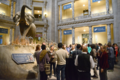 Guests mingle during the closing reception in the Rotunda of the National Museum of Natural History. (photo by Ken Wurdack)