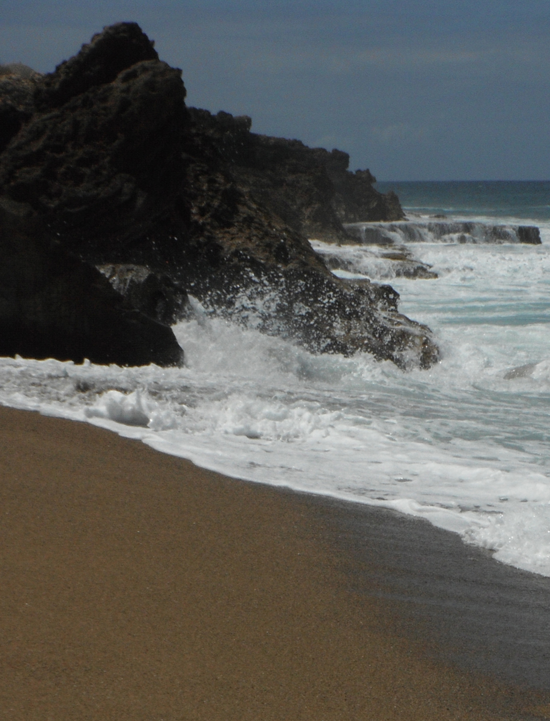 Beach at Rincon, Puerto Rico. A typical coarse-sand, high-energy beach favored by Ototyphlonemertes.
