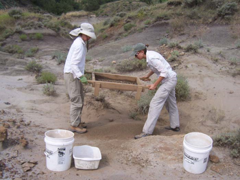 Dry screening fossil-rich sediment