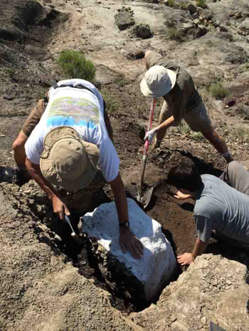Excavating boundary block