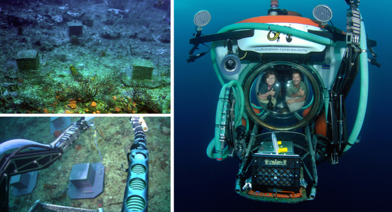 Top Left: Three ARMS units at 350 ft. photographed in January 2013, five months after deployment. Photo courtesy of Substation Curacao. Bottom Left: Two ARMS successfully deployed using the hydraulic arms of the Curasub, August 2012. Photo courtesy of Substation Curacao. Right: ARMS specialists Nancy Knowlton and Chris Meyer in the Curasub submersible after retrieving two ARMS units deployed at deep-reef depths that had remained on the bottom for one year. Retrieval of ARMS by submersible required altering the ARMS base plate and milk-crate lid so that the lid could be latched onto the base plate using the hydraulic arm of the sub. DROP co-investigator Lee Weigt designed and tested the ARMS modifications for deployment and retrieval by submersible. Photo by Barry Brown.
