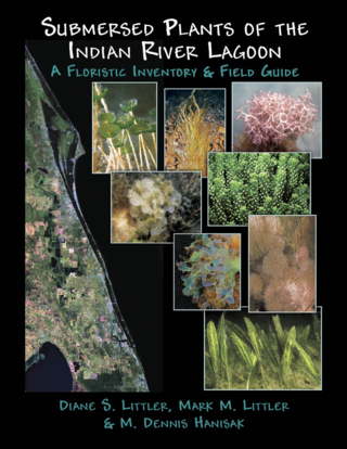 IRL Algae front cover