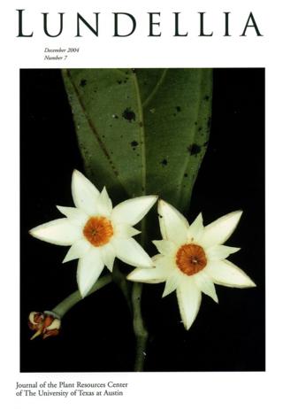 Cover of Lundellia with photograph of Mortoniodendron uxpanapense.