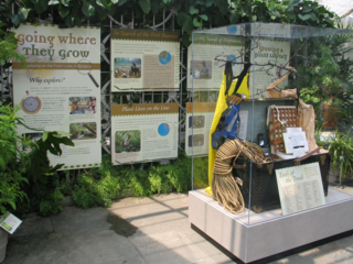 "Department staff are featured in a new exhibit at the United States Botanic Garden, ""Going Where They Grow."""