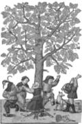 Lindenbaum by David Kyber, in Hieronymus Bock, Kreutterbuch, 1587 [Courtesy of the Smithsonian Institution Libraries, Joseph F. Cullman 3rd Library of Natural History].