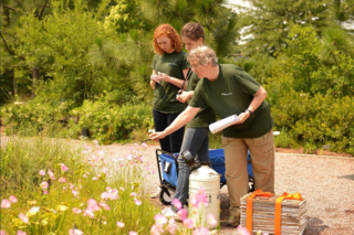Vicki Funk (right) leads a team of collectors, including two Smithsonian undergraduate interns from the University of Delaware, Kristen Van Neste (second from left) and Sarah Gabler, for the Global Genome Initiative-Gardens project. (photo by U.S. Botanic Garden)