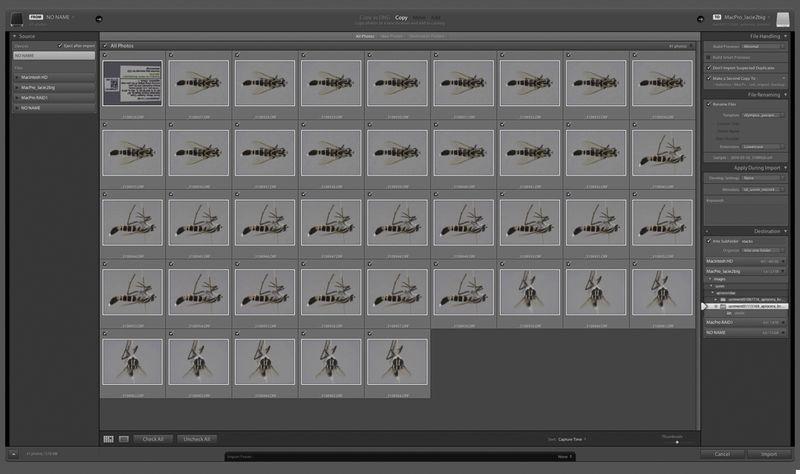 Macrophoto_setup_lr_screen1
