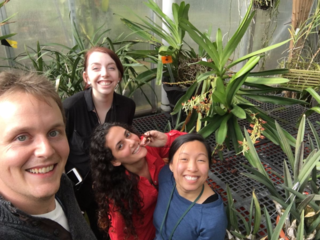 The GGI–Gardens collecting team on Darwin Day (February 12, 2016) in the Smithsonain Gardens Greenhouses collecting Angraecum specimens. From left to right: Morgan Gostel and GGI–Gardens interns Kathryn Faulconer, Maryam Sedaghatpour, and Samantha Vo. (photo by Morgan Gostel)