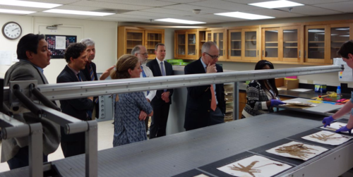 Sylvia Orli and Laurence Dorr (fourth and fifth from left) give Smithsonian Institution's Secretary Skorton (seventh from left) a tour of the Department of Botany's digitization conveyor project. (photo by Ingrid Lin)
