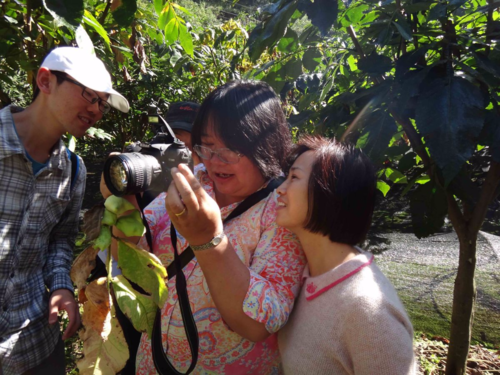 Zhumei Ren & Jun Wen collecting sumac-gall aphids with graduate students in Wufeng, Hubei Province, China (September 2014).