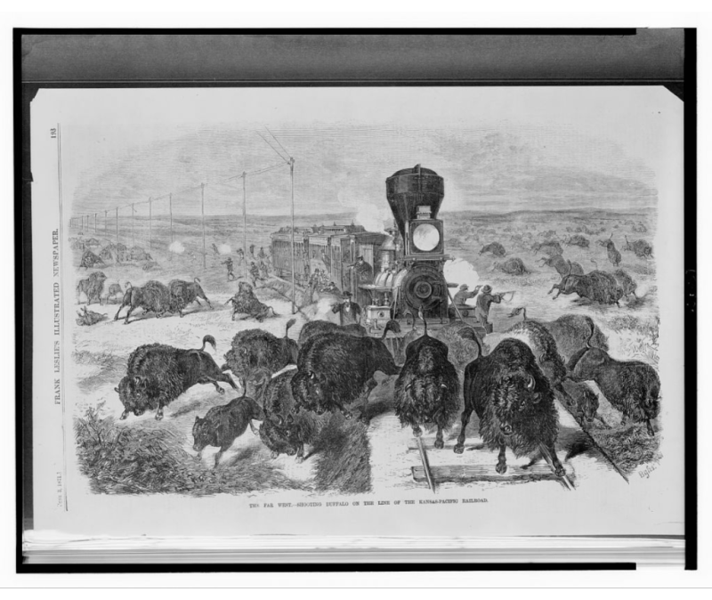 """The Far West - Shooting buffalo on the line of the Kansas - Pacific Railroad."" 1871. Frank Leslie's Illustrated Newspaper. Via"