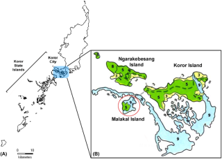 The Palau archipelago (A) is shown with the Koror State region in brackets and the Koror urban district shaded. Zoomed in view of the Koror urban district (B) is shown with soil types shaded. Malakal Island is circled and the other two inhabited islands, Ngarakebesand Island and Koror Island are labeled.