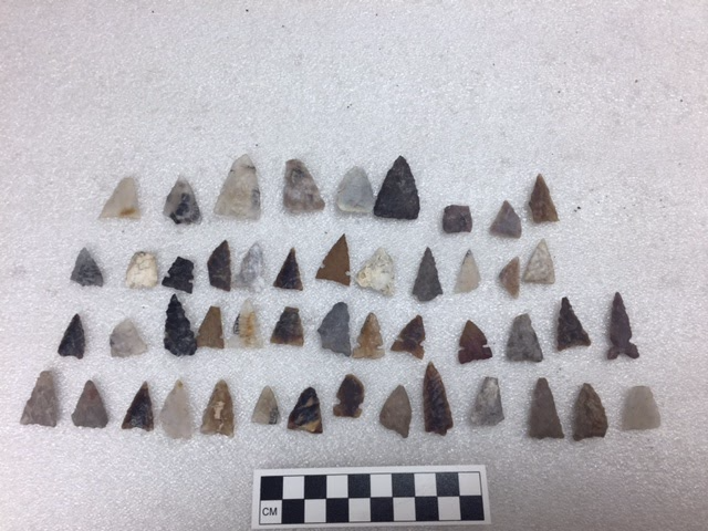 Projectile points of varying shapes and sizes