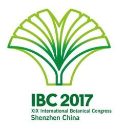 IBC2017_400x400