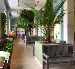 The Garden Lounge at the National Museum of Natural History serves as a welcoming interior garden rest and recharge area for visitors featuring live plants and a relaxing atmosphere with botany content as a frame.