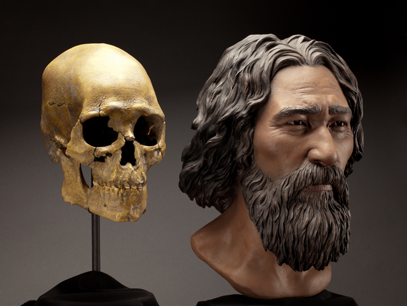 Kennewick reconstruction by Brittany Tatchell