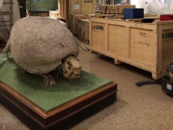Glyptodon on its rolling platform