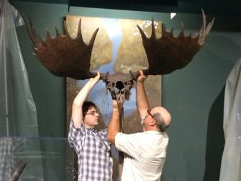 Elk lift