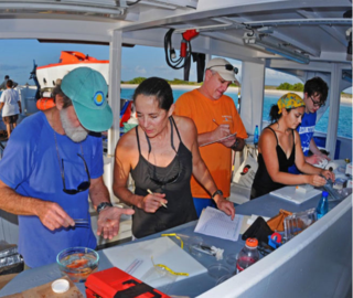 Ross Robertson, Carole Baldwin, Lee Weigt, Cristina Castillo, and Lowen Wachhaus (high-school student) processing samples obtained from submersible diving off Klein Curacao aboard the R/V Chapman. Photo by Barry Brown.