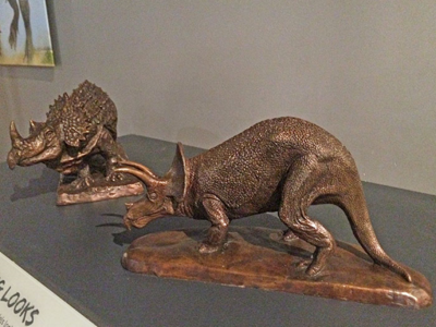 Triceratops models