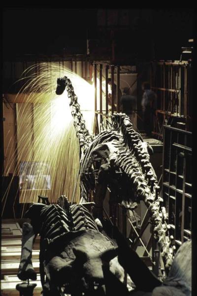 Welding around Diplodocus in 1980