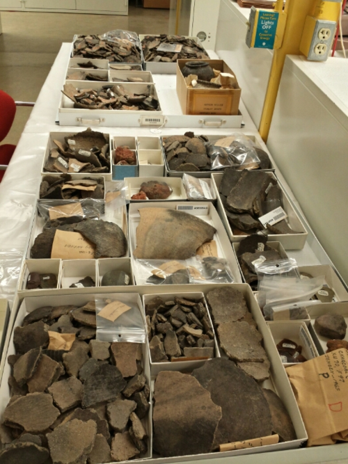 Several trays full of potsherds, along with a few other artifacts