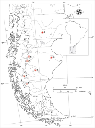Map showing locations cited throughout the text corresponding with collecting sites. 1) El Calafate 2) Sunken crater northeast from Cardiel Lake 3) Estancia Sierras Blancas 4) Chubut 5) Between Los Antiguos and Paso Roballos 6) Between Lago Pueyrredon and Chile 7) Los Glaciares National Park